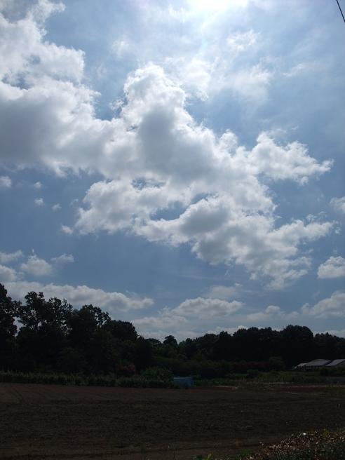 2010_07_30_a_summer_sky_and_field